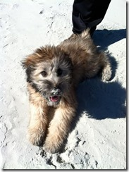Renly First Beach Trip